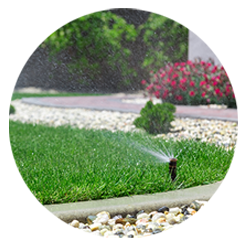 Landscaping And Lawn Care San Antonio Tx 210 818 8744