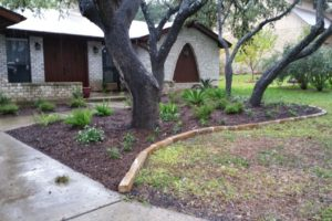 Landscape project with stone path way with decorative rocks, bark and bushes in San Antonio Texas