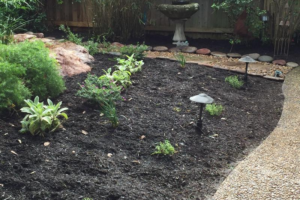 Landscape project with stone path way, bark and bushes in San Antonio Texas