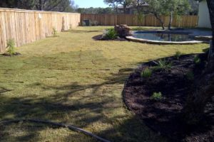 New sod and fence construction landscaping project in San Antonio Texas