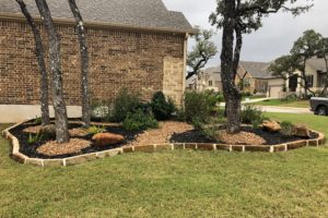 landscaping project with new sod and custom stone bed with bark, bushes and trees