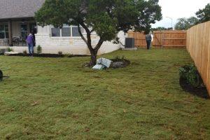 yard with new sod installation