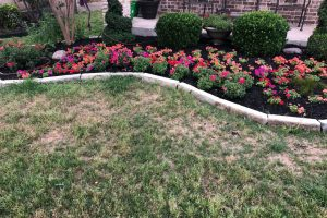 new landscaping flower bed project