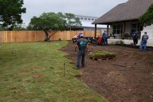 men installing sod in a yard