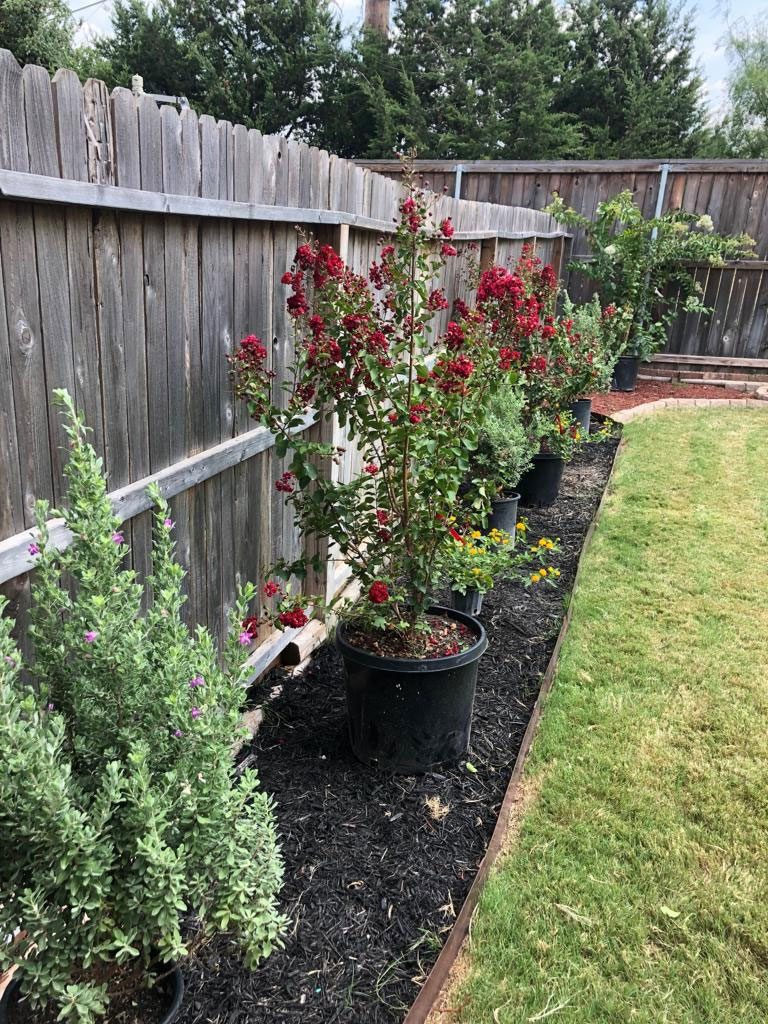 Residential Landscaping And Lawn Care Tx 210 818 8744