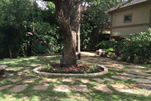 flower bed landscaping with stone work around a tree