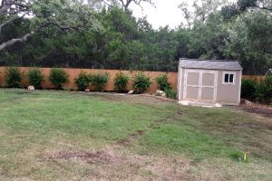 New yard landscaping with bushes